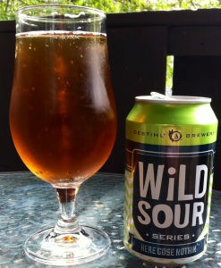 Destihl Wild Sour Series: Here GOSE Nothin'